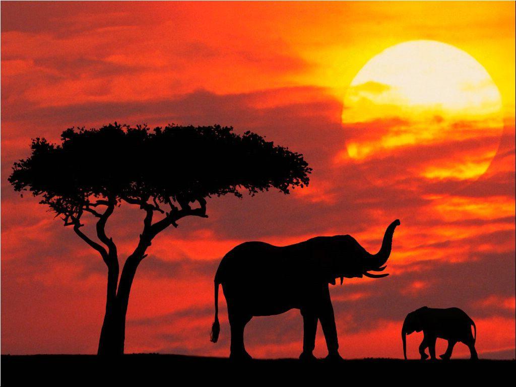 Kenya...per saperne di più