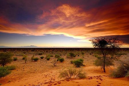 South Africa...per saperne di più